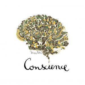 Cerveau Conscience