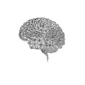 Cerveau Conscience Original